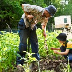 FreeGreatPicture.com-32429-father-and-son-are-doing-gardening